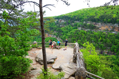 Visitors on the main overlook of the overlook trail in cloudland canyon state park Georgia