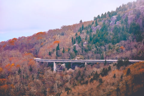 close up view of linn cove viaduct along the blue ridge parkway from rough ridge