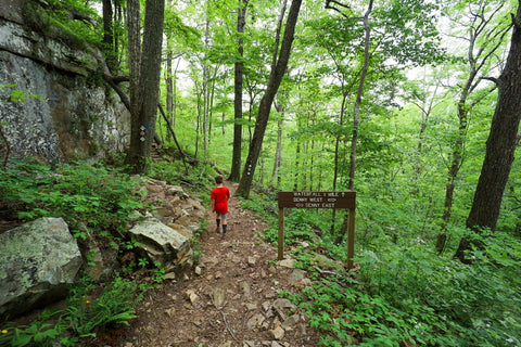 Hiking the Denny cove trail in south Cumberland State Park in Tennessee