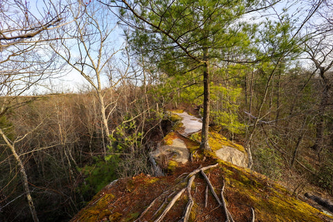 Top view of sandstone arch known as arch of triumph in red River Gorge Kentucky