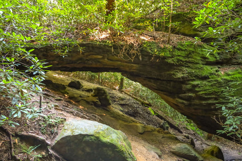 silvermine arch opening in red river gorge