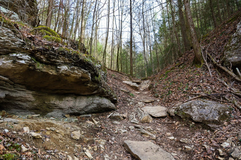 hiking to henson's arch in natural bridge state park kentucky