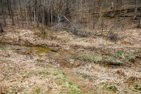 Creek crossing onto hiking trail to ravine arch Indiana