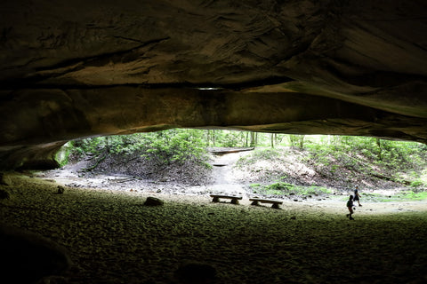 looking out from within Hazard Cave entrance in Pickett CCC State Park