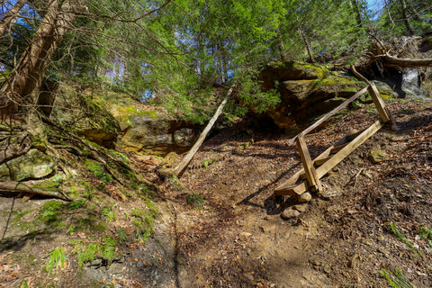 Hiking along trail 9 in Turkey Run State Park Indiana