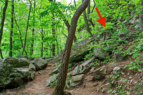 Exit 1 on the climbers loop in foster falls within south Cumberland State Park in Tennessee