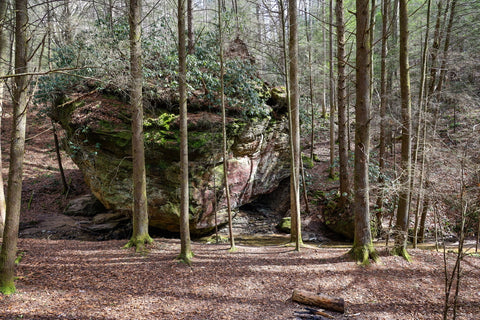 small tunnel near camping area along hiking trail to whittleton arch in red river gorge kentucky