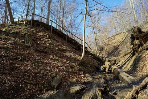 Wooden staircase descending into falls canyon along trail 9 in Turkey Run State Park Indiana