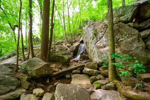 Middle falls of Glen falls trail in Lookout Mountain Tennessee