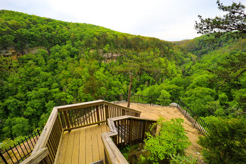 The bear creek overlook along the overlook trail in cloudland canyon state park Georgia