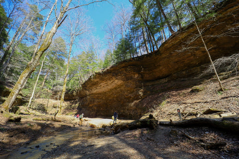 Deep canyon and creek crossings along trail 3 in Turkey run state park indiana