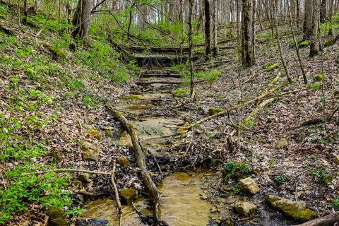 dry waterfall crossing along wild hyacinth trail in turkey run park