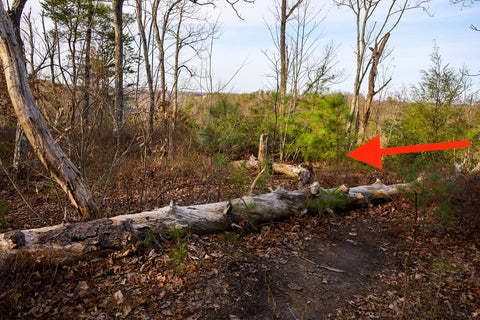Arrow pointing to trail heading to arch of triumph in red River Gorge Kentucky