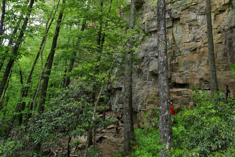 Rock climbers on the climbers loop in foster falls within south Cumberland State Park in Tennessee