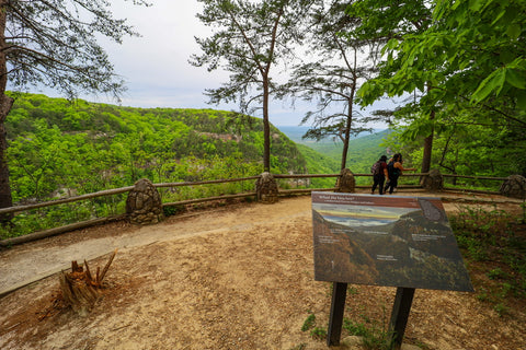 Scenic views from the overlook trail in cloudland canyon state park Georgia