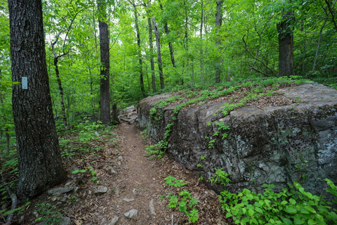 Hiking along the waterfall trail in Denny cove within south Cumberland State Park in Tennessee