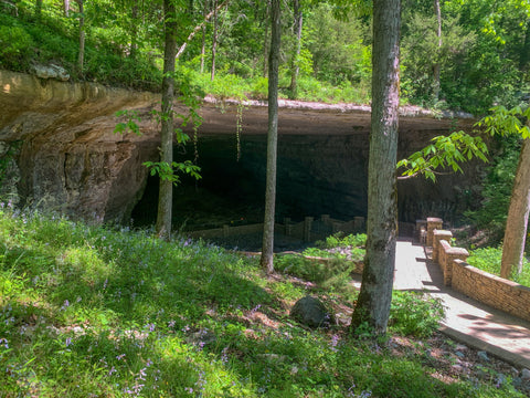 cave entrance into cathedral caverns state park alabama