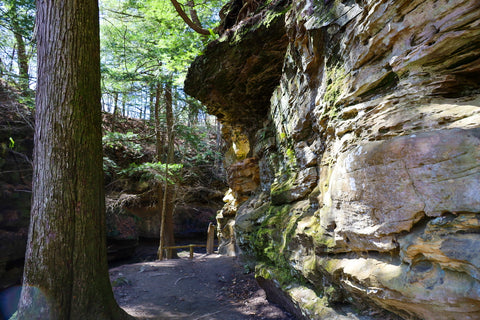 Hiking along trail 3 in Turkey run state park indiana