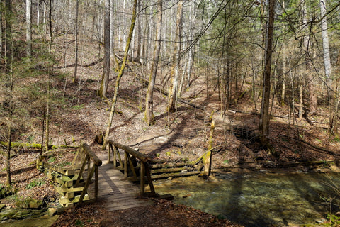 bridge crossing along old railroad tracks to whittleton arch in red river gorge kentucky