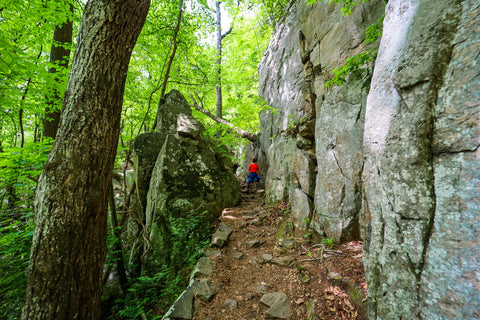 Hiking through a canyon along the Glen falls trail in Lookout Mountain Tennessee