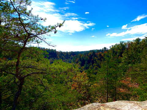 sky bridge arch red river gorge
