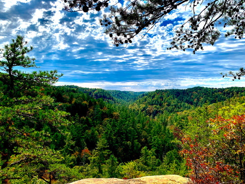 whistling arch trail red river gorge