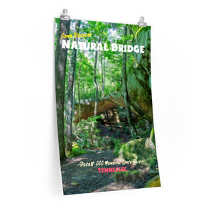 Pickett State Park Natural Bridge Tennessee Poster