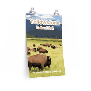 Yellowstone National Park Bison Poster