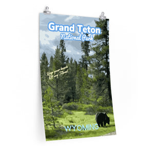 Grand Teton National Park Wyoming Grizzly Poster