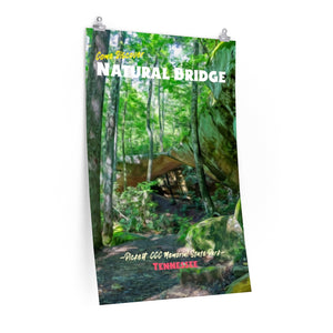 Pickett State Park Natural Bridge Poster