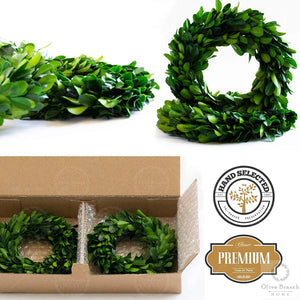 Mini Preserved Boxwood Wreath Set - 6 Inch