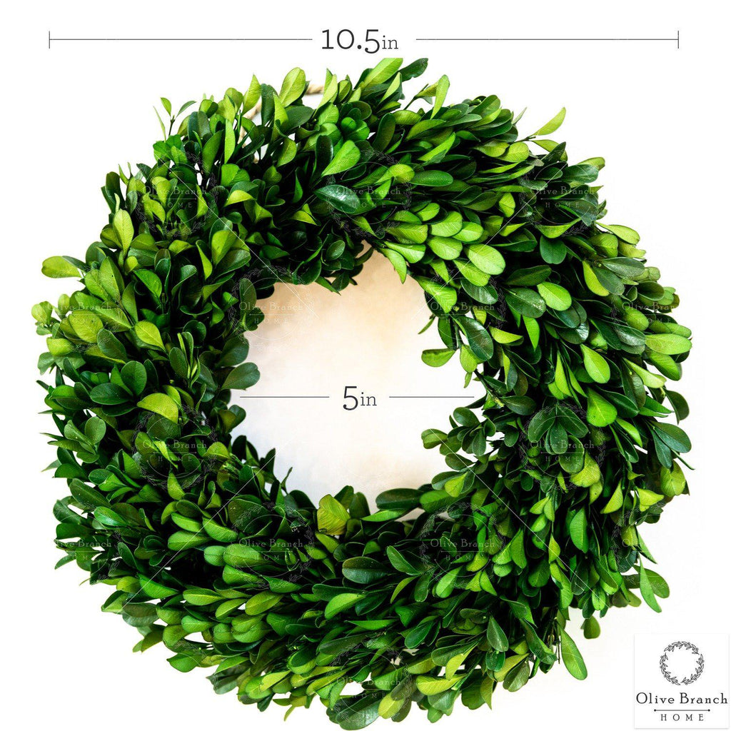 10.5 Inch Small Green Preserved Boxwood Wreath-Preserved Wreath-OliveBranchHome
