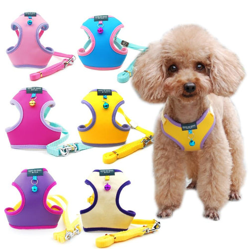 Adjustable Dog Harness with Bell - Petacco