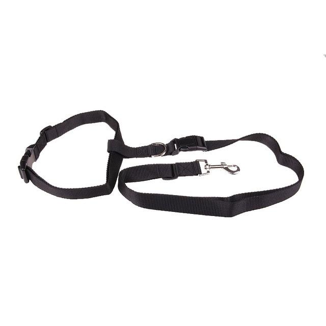 Dog Running and Jogging Lead - Petacco