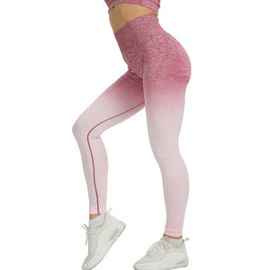 Gradient Seamless Mesh Workout Clothes