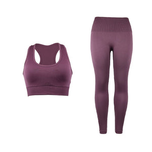 Fitness 2 piece seamless workout set