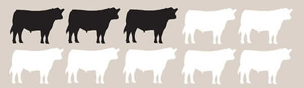graphic of ten cow silhouettes with three highlighted in black