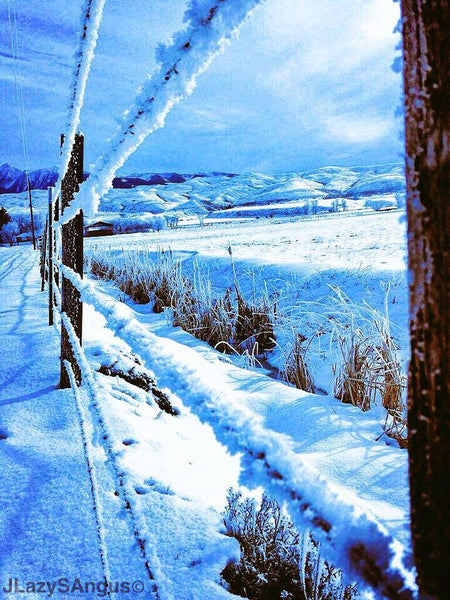 electric fence in cold weather