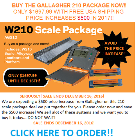 GALLAGHER LIVESTOCK AND CATTLE SCALE SYSTEM FOR SALE