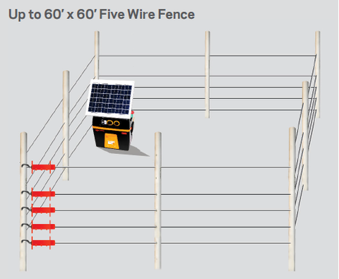 electric bee hive fence to keep bears controlled in apiary bee keeping fence