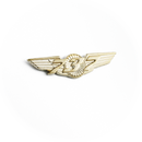 Wing Pin Boeing 737 gold