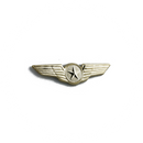 Wing Pin Pilot Star (gold)