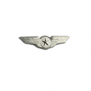 Wing Pin Pilot Star (silver)