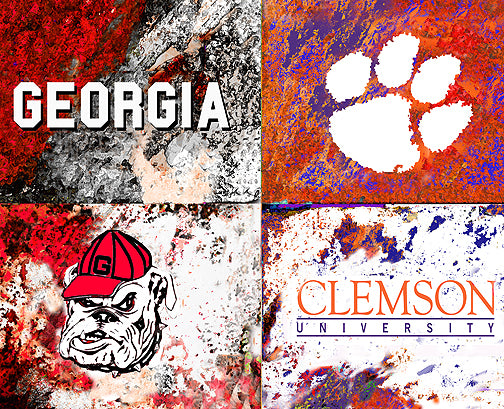 A House Divided - Georgia / Clemson