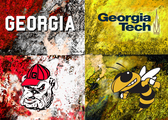 A House Divided Georgia / Georgia Tech