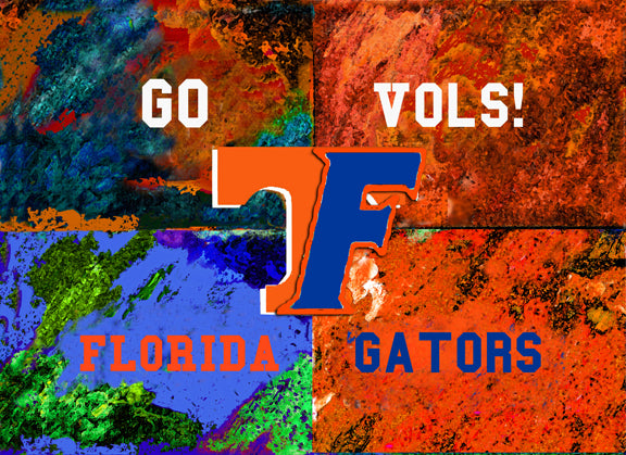 A House Divided - Florida / Tennessee