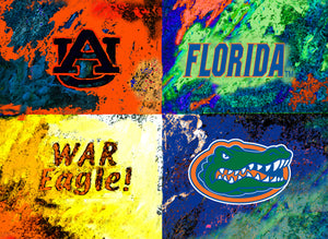 A House Divided Auburn / Florida by artist Richard Russell