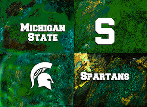 Michigan State Logos