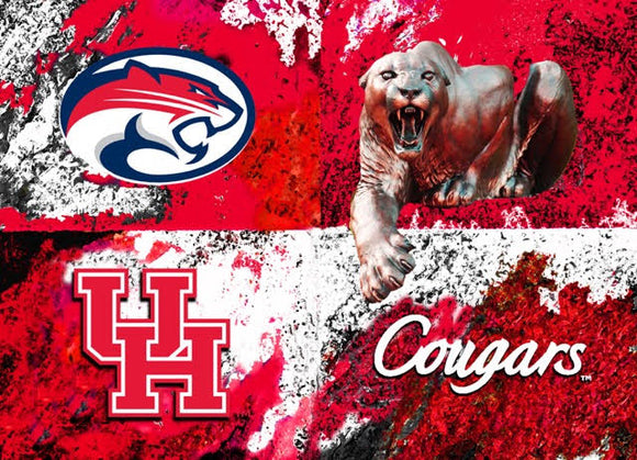 Houston Cougars Logos