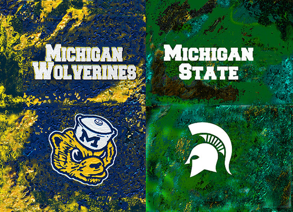 A House Divided - Michigan / Michigan State